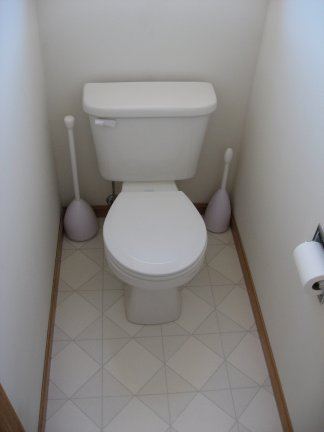 Your old toilet