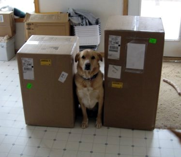 Packages containing toilet
