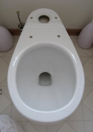 Installation of the toilet bowl seal